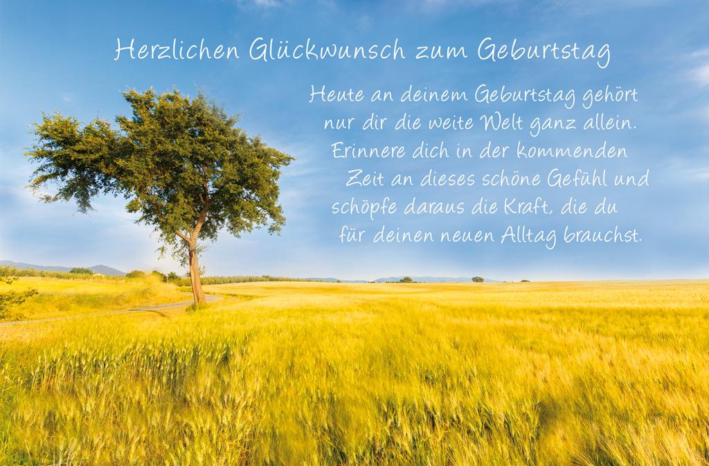 Geburtstag Grußkarten Luma Kartenedition Schöne Grußkarten Für